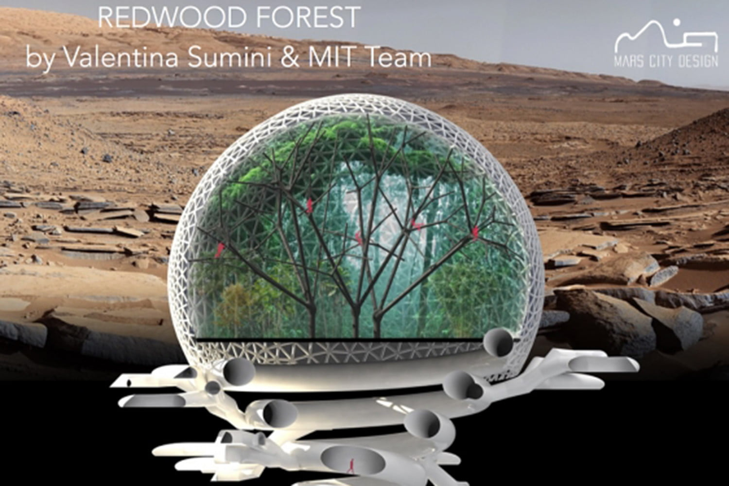 martians may live in these massive domed greenhouses digital trends. Black Bedroom Furniture Sets. Home Design Ideas