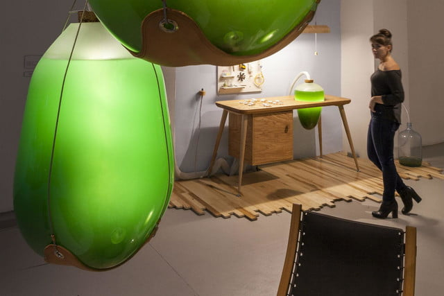 microalgae lamps can light your home and are edible algae lamp 04