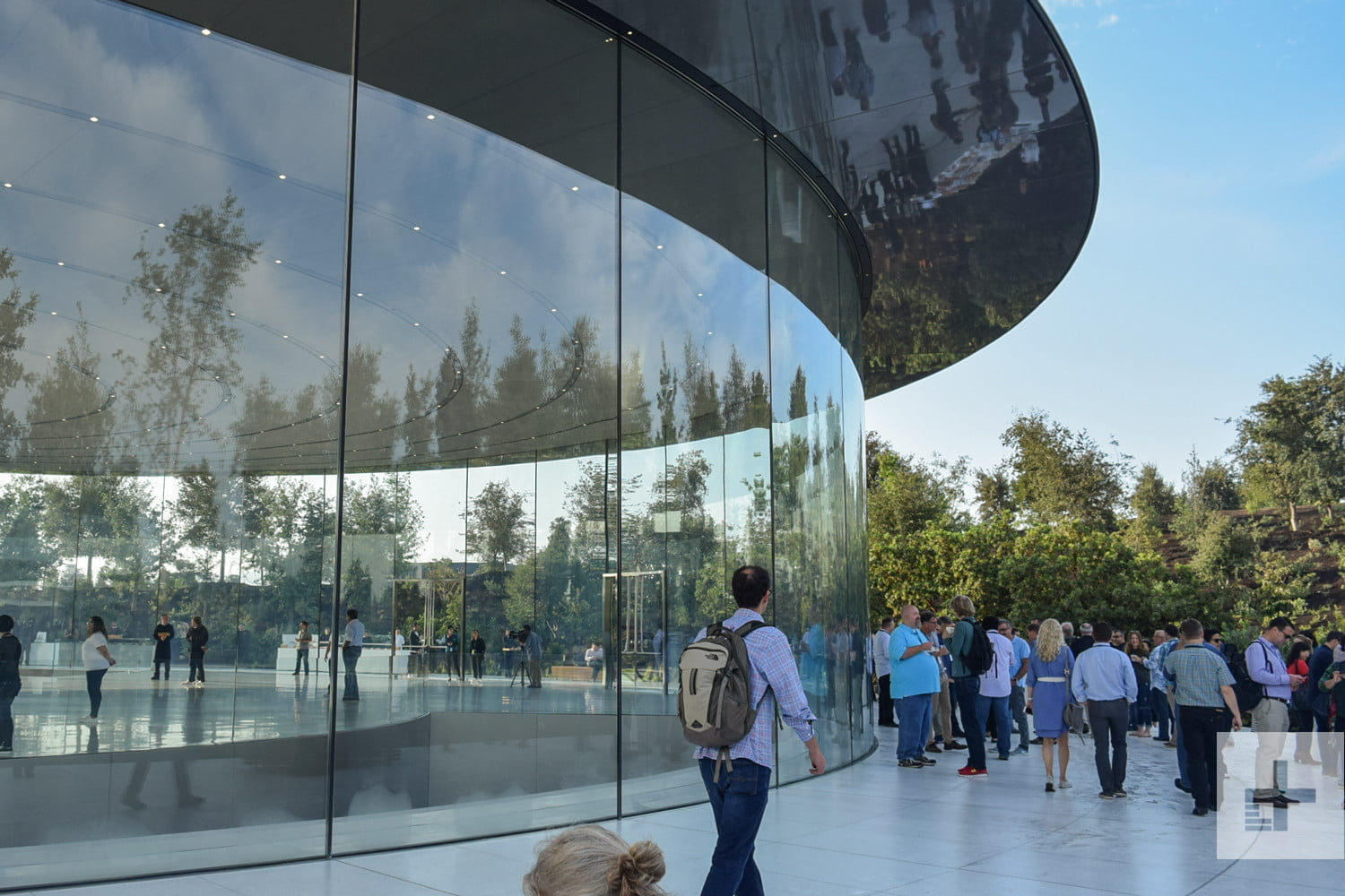 Distracted' Apple Park Workers Are Walking Into Its Glass