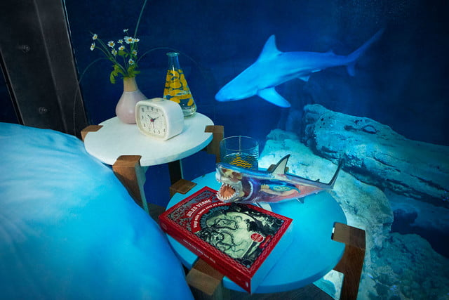 sleep underwater paris aquarium sharks airbnb de shark 005