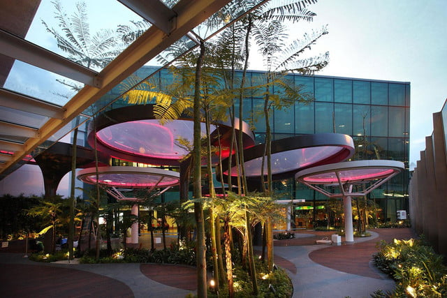 best airports for layovers changi airport lily pad outdoor deck