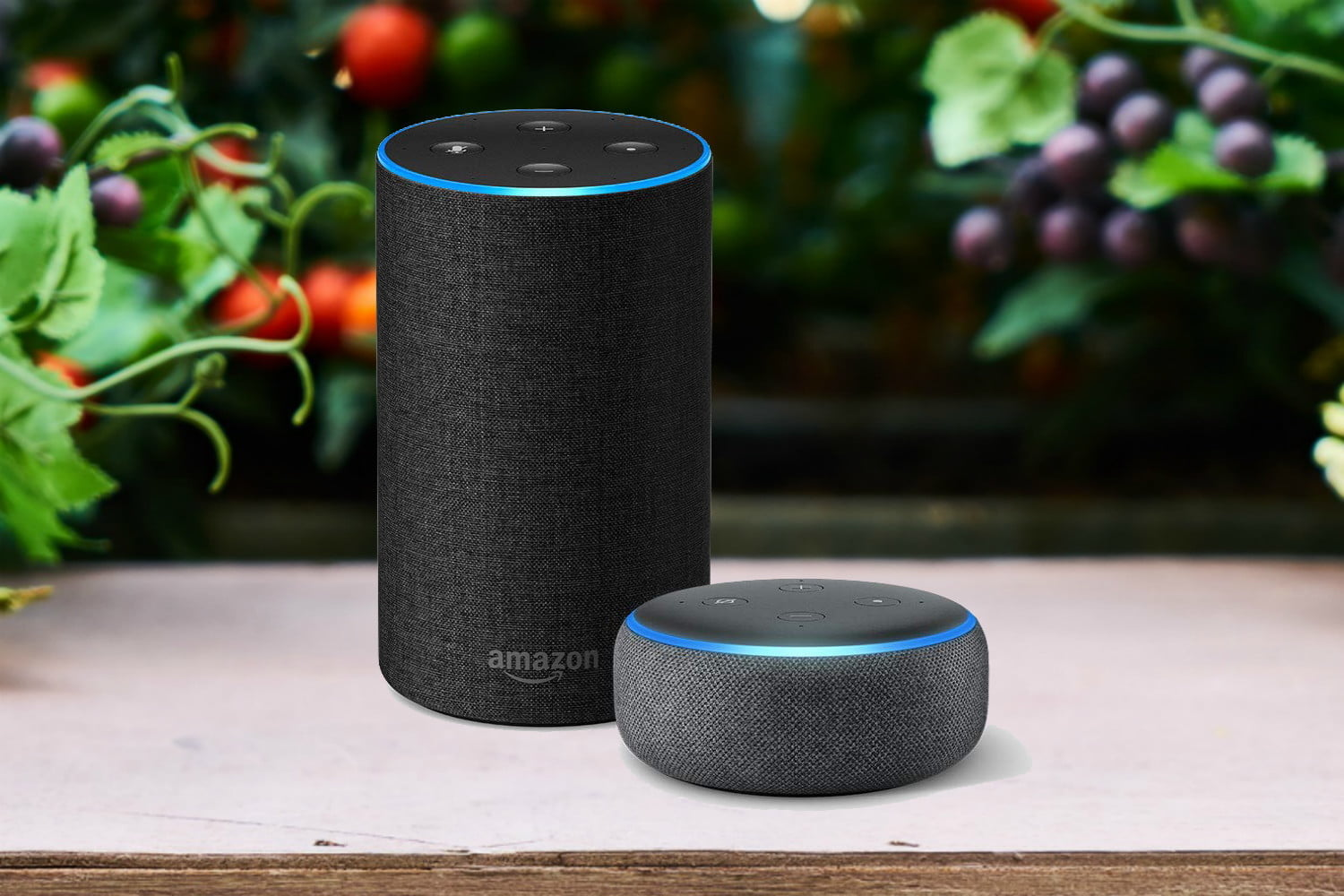 This Amazon Sale Saves You Up To 40 On Echo Devices Digital Trends