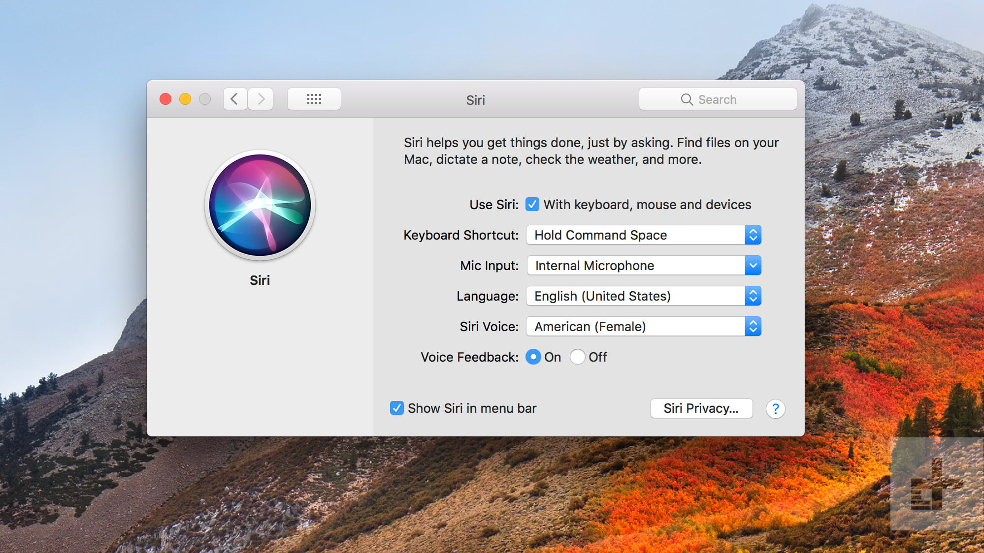 Macos High Sierra Review Digital Trends