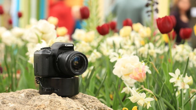 radian 2 lets you create motion time lapse videos with precision flowers