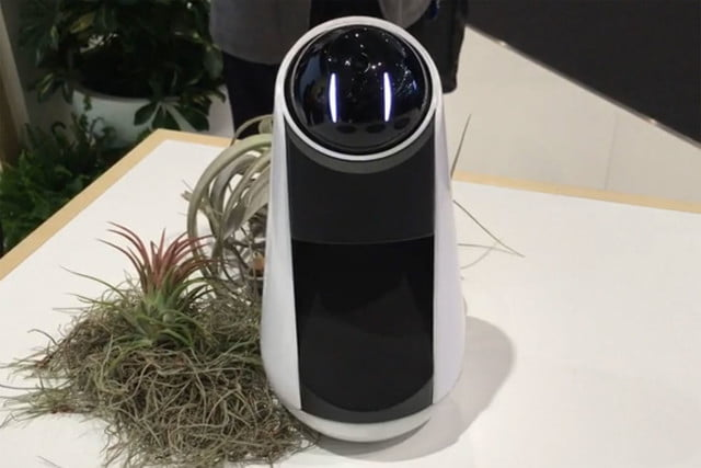 The Best Robots of MWC 2016