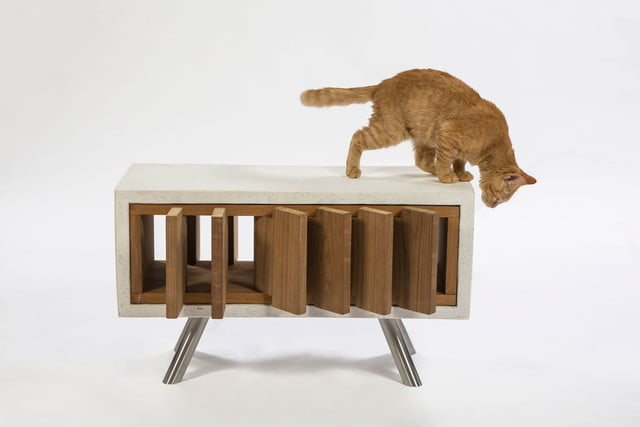 architects for animals design amazing cat houses standardarchitecture  photo credit meghan bob photography