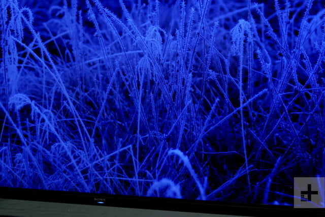 revision sony z9g 8k 85 inch hdr led tv review 8 800x534 c