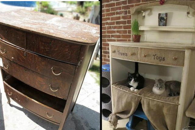 furniture and homes that are made for cat people gypsy barn condo