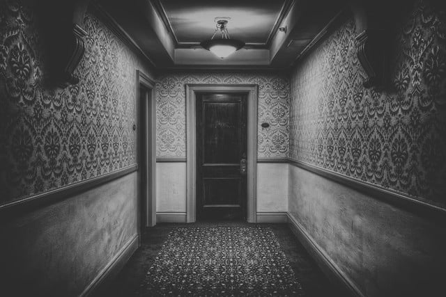 haunted houses places in america room 217 the stanley hotel